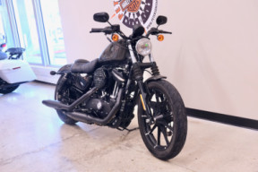 2019 883N Sportster Iron 883 in Industrial Gray thumb 3