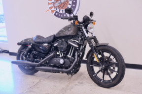 2019 883N Sportster Iron 883 in Industrial Gray thumb 2