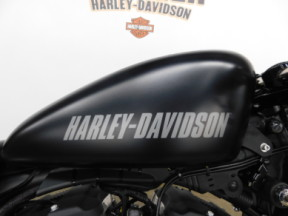 2016 Harley-Davidson Sportster ROADSTER XL1200CX  thumb 2